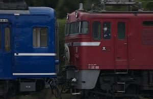 N090215009