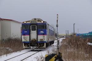 G110116008